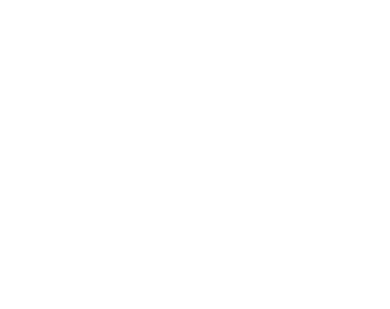 customized-solution-logo