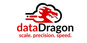 data-dragon-logo2